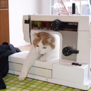 Sewing machine and cat