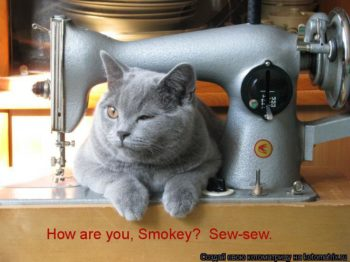 Learn basic sewing skills