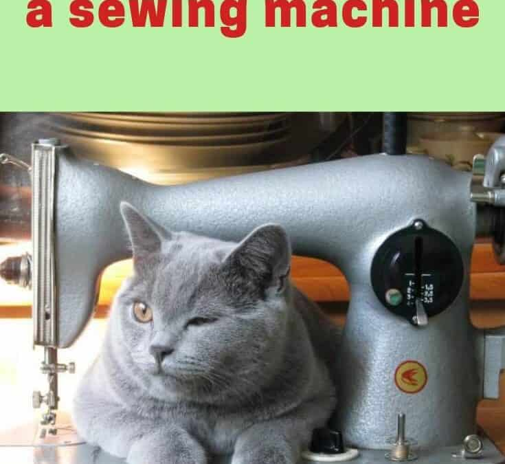 Sewing Basics # 3: How to Use a Sewing Machine